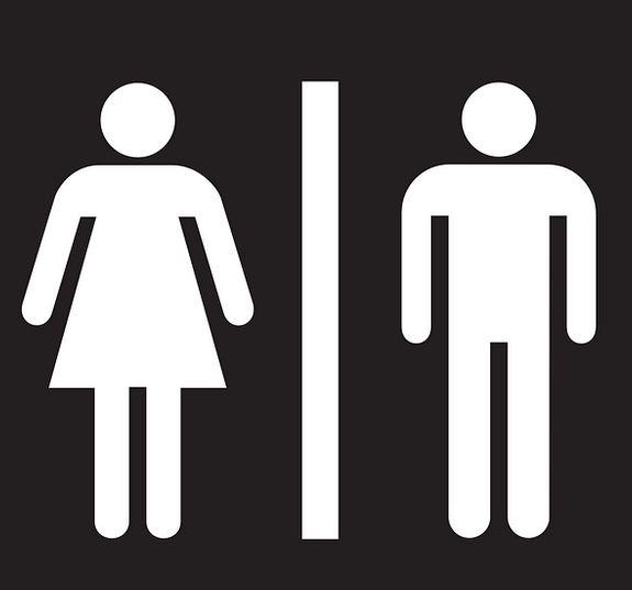toilet speed dating